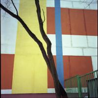 Фотопрогулка с Дмитрием Музалёвым